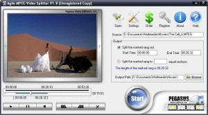 Agile MPEG Video Splitter