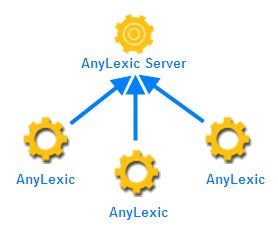 AnyLexic Server: Terminology Management