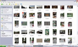 ArcSoft RAW Thumbnail Viewer
