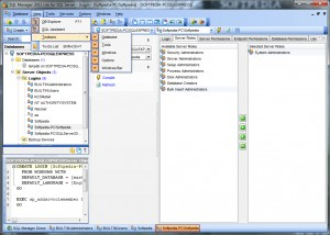 EMS SQL Manager 2011 Lite for SQL Server