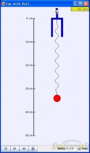 Falling Cup with Ball Model