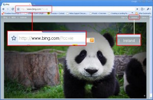 Go To Bing