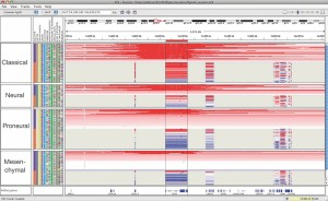Integrative Genomics Viewer