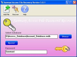 MS Access 2000 Password Recovery
