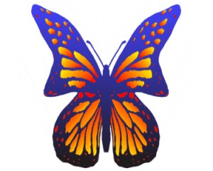 One Butterfly