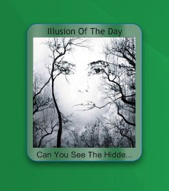 Optical Illusion Of The Day Yahoo Widget