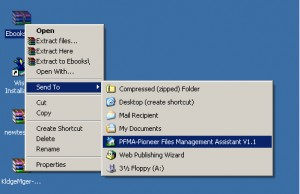Pioneer Files Management Assistant