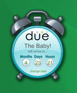 Pregnancy Countdown Widget