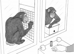 Test::Chimps::Howto