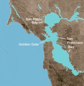 Upcoming SF Bay